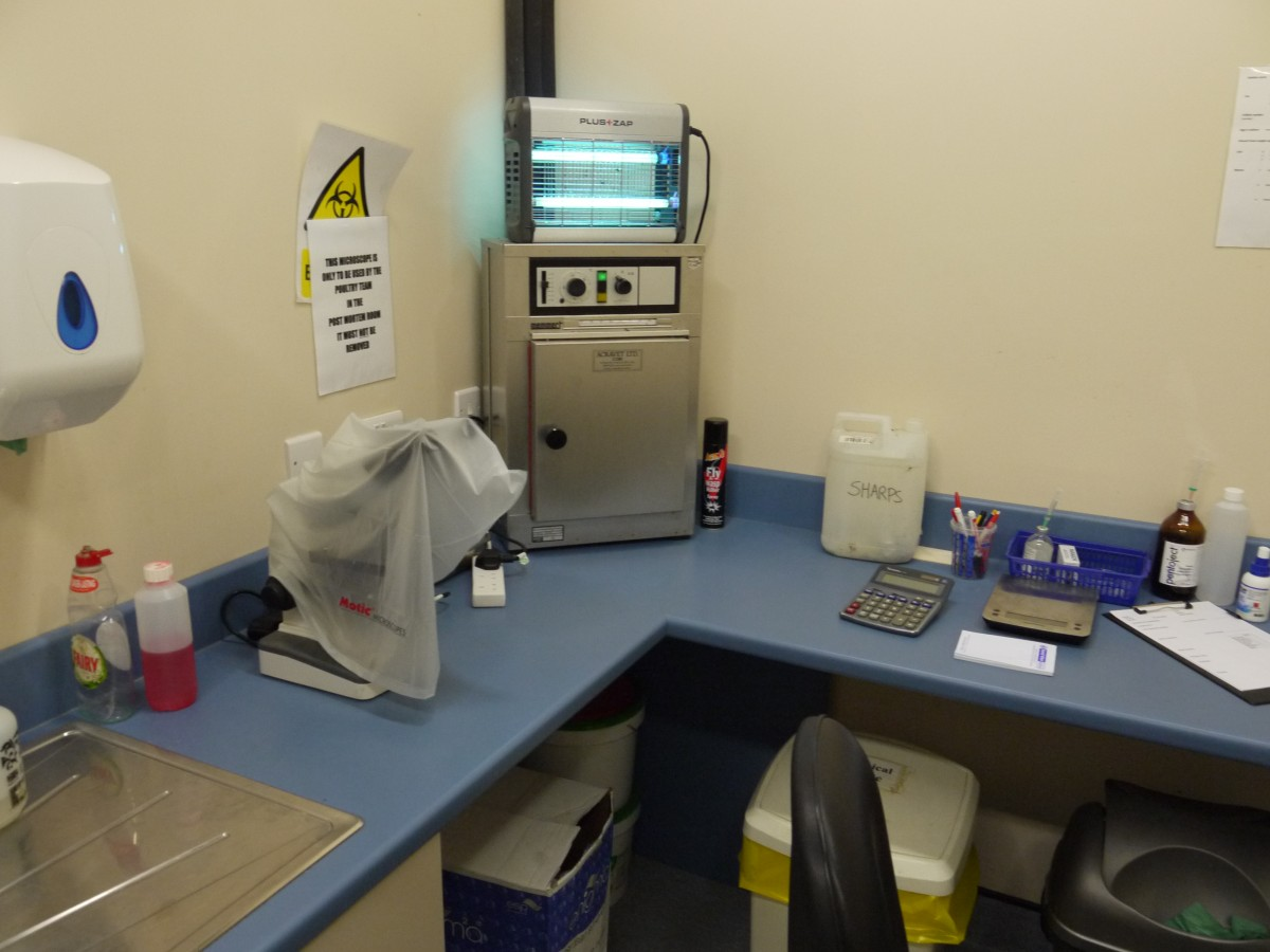 Bacterial cultures and farm diagnostic tests in-house